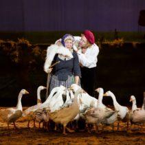 Theatervoorstelling De Stormruiter en De Valk Roofvogels