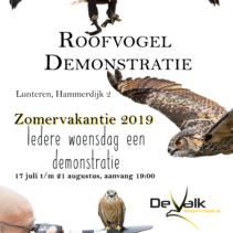 Roofvogeldemonstraties zomervakantie 2019 in Lunteren op de Veluwe